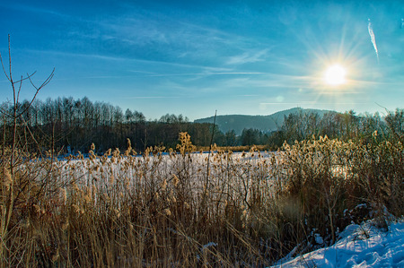 The Winter landscape at the Lake in Ilmenau Thuringia, Germany