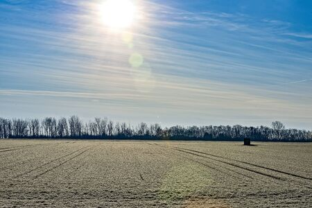 A field in winter with the sun in the sky