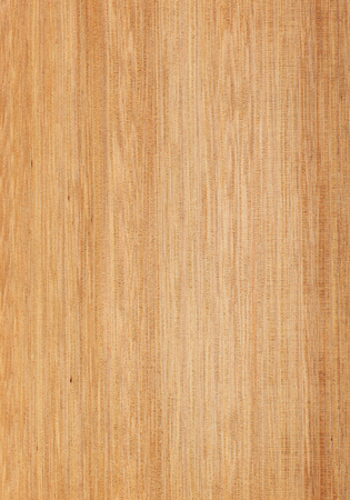 Wood texture close-up. Tasmanian oak quarter cut. Stock Photo