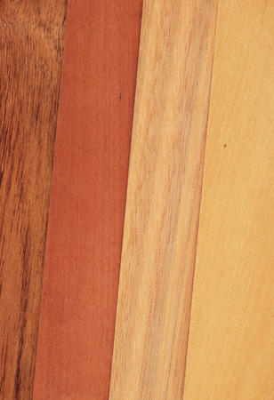 Veneer samples of blackwood, myrtle, tasmanian oak crown cut and sassafras. Stock Photo