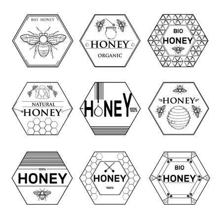 Honey hand drawn graphic icons set with beehive wax cell flying bee isolated illustration.Badges and labels design
