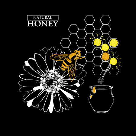 Honey design elements with beehive wax cell flying bee isolated illustration. Badges and labels design Illustration