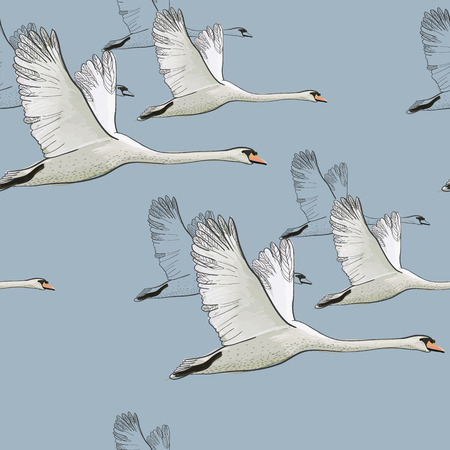 illustration of Seamless pattern of drawing Flying Swans. Hand drawn, doodle graphic design with birds. Wrapping paper, wallpaper, backdrop. Vettoriali