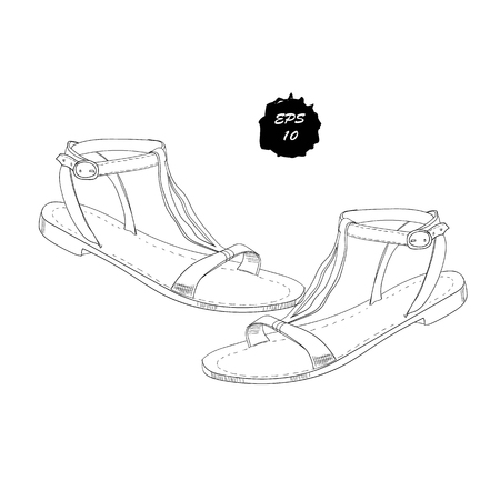 illustration of isolated objects sandal shoes. Drawing graphic design for woman, girl and lady. Footwear for summer