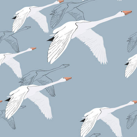 Vector illustration of Seamless pattern of drawing Flying Swans. Hand drawn, doodle graphic design with birds. Wrapping paper, wallpaper, backdrop. Banco de Imagens - 124965755