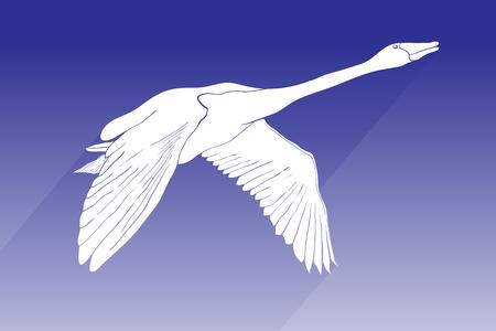 Illustrazione di vettore dell'icona di vettore del cigno della siluetta. cigno volante con segno ombra su sfondo blu. icona del cigno per web e app.