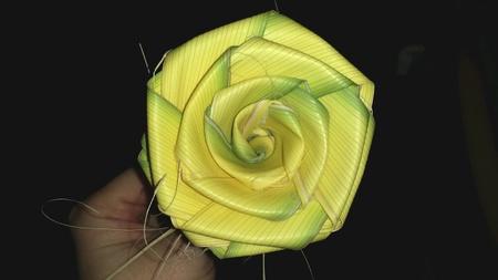 Palm leave rose