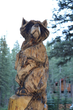 Racoon Wood Carving