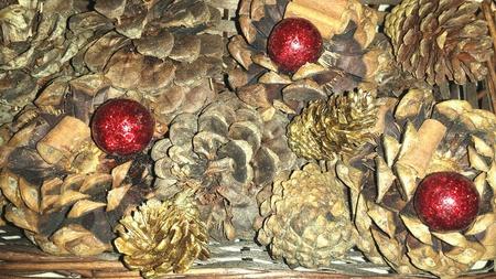 pinecones: Christmas Pinecones