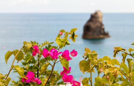 islet: Buganvilias  Islet Stock Photo