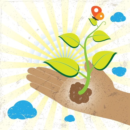 Green plant and butterfly in hand with sun rays and cloud in the background. Stock Vector - 12436147