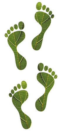 Concept of environmental conservation, green footprints, sustainable development, etc  created using macro image of a leaf Stock Photo - 14029583