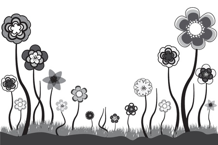 with space for text: Beautiful floral illustration of seasonal blooms in summer or spring time. These  flowers are in tones of grey, black and white. The white space can be used for any text. Illustration