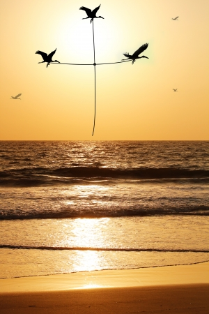 Beautiful & heavenly seaside in the evening with birds carrying thread shaped as holy cross. The evening sky is lit by the setting sun with birds flying above the beach & sea reflecting the sunlight photo