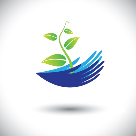 plant hand: Concept graphic- womans hands with plant or seedling icon(symbol). The illustration can represent concepts like environmental conservation, protecting plants, forest conservation, etc