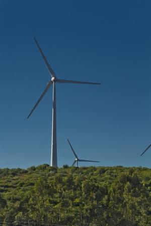 Windmill energy gathering farm