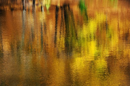 Abstract natural background, colorful autumnal trees reflected on the water photo