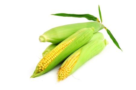 Golden maïs oren geïsoleerd op witte achtergrond