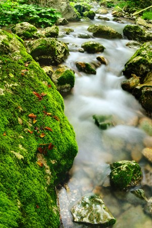 Beautiful mountain river streaming between mossy stones  Stok Fotoğraf