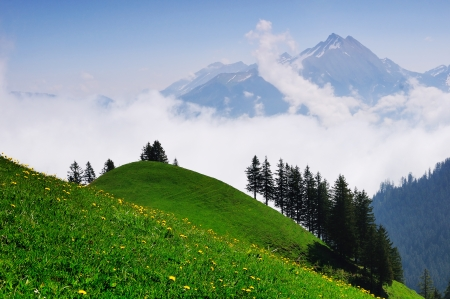 Swiss Alps in the sunny morning with valley covered by clouds Stock Photo - 14076119