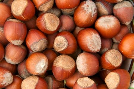 Hazelnuts, top view