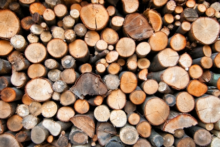 Background of cut wood logs stacked in a pile