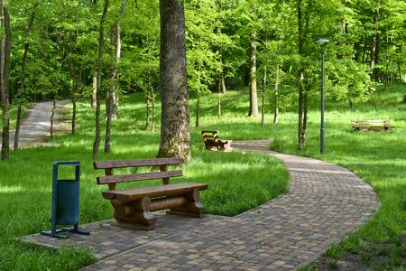 Wandelpad in een zomer park met houten bankjes voor rust