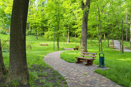 shady: Beautiful shady park and benches for taking rest Stock Photo