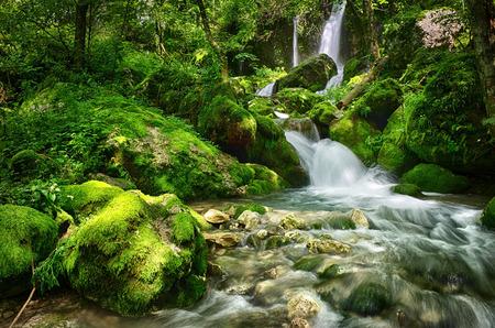 滝と川のストリームと森の美しいシーン