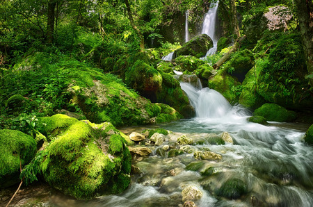 Beautiful scene in the forest with waterfall and river stream
