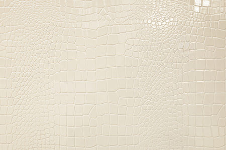 Crocodile leather textured plastic background Stock Photo