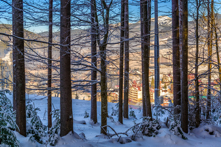 Snow forest with mountains and sunny alpine ski resort valley on the background Stock Photo