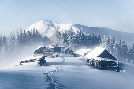 Cold Christmas morning high in the Carpathian mountains. Snowy backcountry landscape Stock Photo