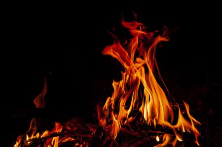 Burning campfire at night. Campimg activity