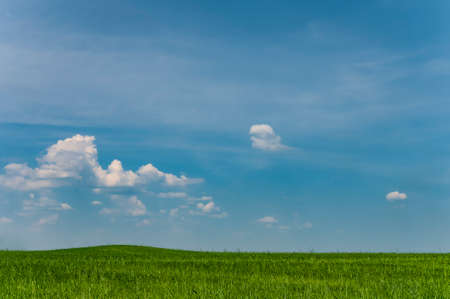 Minimalisticlandscape with green field and blue sky with small clouds. Spring tranquil panorama
