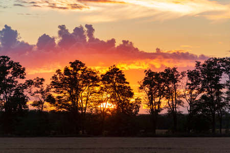 Orange sunset in the countryside. Dramatic clouds and tree silhouettes. Original photo Imagens