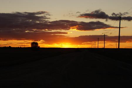 'power line': sunset road power line tree Stock Photo