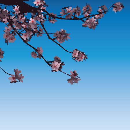 Cherry Blossom Background Flowers Pink On Branch Flat Vector Illustration Illustration