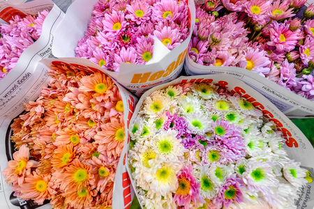 cited: Pak Khlong Talat market at the mouth of the canal is a market in Bangkok, Thailand that sells flowers, fruits, and vegetables. It is the primary flower market in Bangkok and has been cited as a place of symbolic values to Bangkok residents. Stock Photo