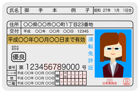 Excellent female driver driver's license sample image Vettoriali