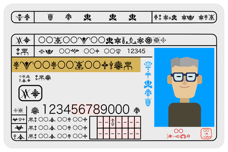 Excellent male aged driver drivers license sample image  イラスト・ベクター素材
