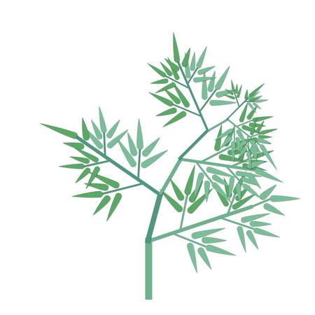 Tanabata Bamboo Illustrations