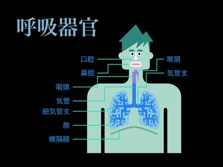 Simple illustration of a respiratory organ with the name of each part in Japanese on a black back 矢量图像