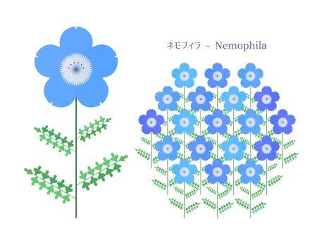 Simple illustration of Nemophila 矢量图像