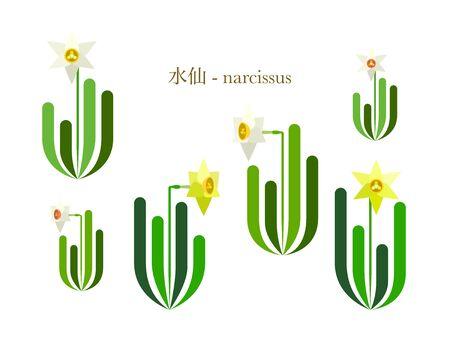 Simple illustration of daffodils