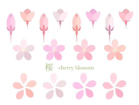 Simple illustration of cherry blossoms 免版税图像 - 140797388