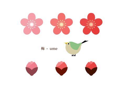 Simple illustration of plum blossoms