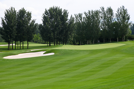 beautyful: view nature landscape of beautyful golf course at China