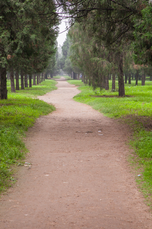 pathway in a park Stock Photo