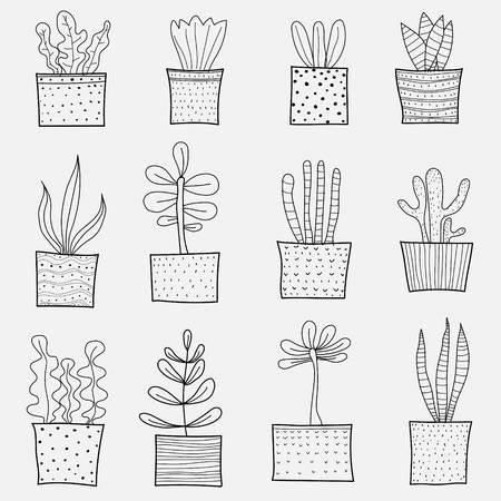 Line Hand Drawn Doodle Cactus Vector Set. Handmade Outline Vector Illustration.